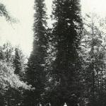 Усадьба Митино, парк