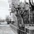 Усадьба Мысово архивное фото
