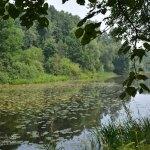 Усадьба Остафьево, пруд в парке