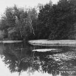 Усадьба Останкино, фрагмент парка с прудом