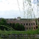 Усадьба Отрада Орловых, дворец со стороны парка