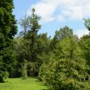 Усадьба Поливаново, парк