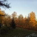 Усадьба Поречье, парк