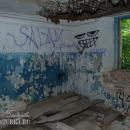 Усадьба Соха, руины главного дома