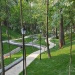 Усадьба Старо-Никольское, парк