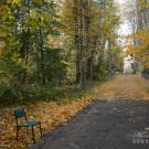 Усадьба Успенское, дорога к замку