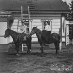 Усадьба Владимировка. Гости имения на лошадях. Фото 1910г. Из архива М.Г. Рогозиной