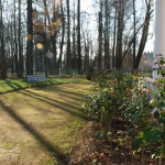 Фрагмент парка в Захарово
