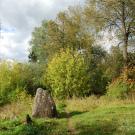 Усадьба Митино, парк рядом с домом