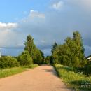 Дорога в Васюнино