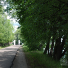 Ярославль, Петропавловский парк