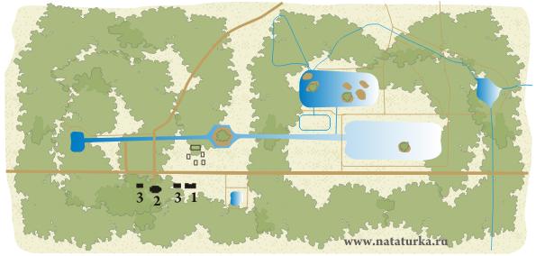 План усадьбы Алмазово