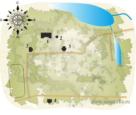 План усадьбы Денежниково