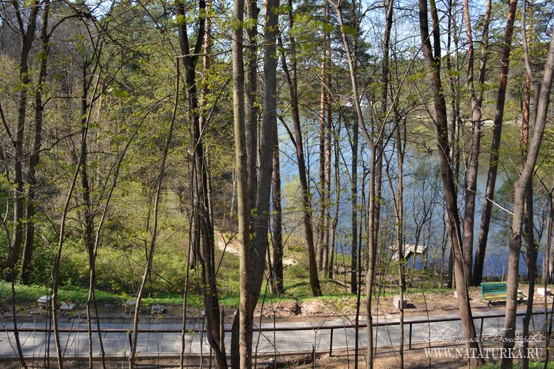 Усадьба Подушкино парк с прудом