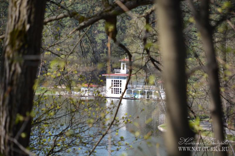 Парк с прудом усадьбы Подушкино
