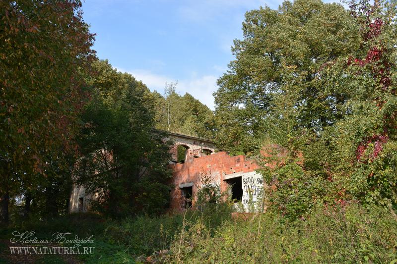 Усадьба Иславское. Предположительно руины главного дома