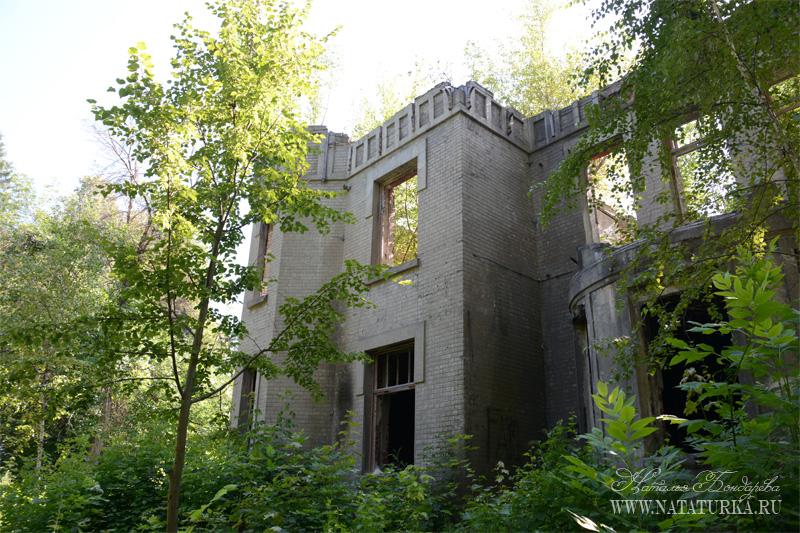 Усадьба Липгарта, руины главного дома