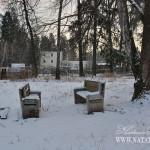 Усадьба Медное-Власово. Фрагмент парка