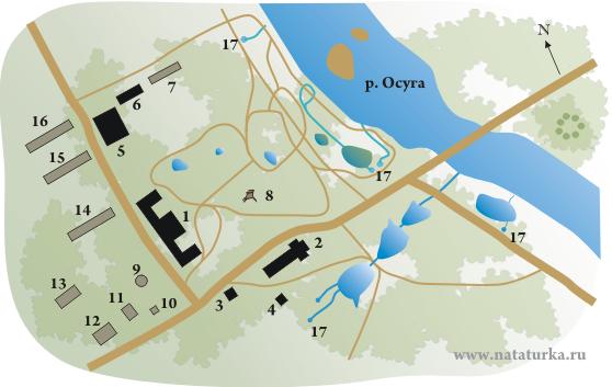 План усадьбы Прямухино