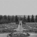 Усадьба Свистуха. Вид цветника и парка, сер. 1900-е гг.