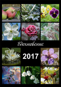 Н.Бондарева Календарь на 2017 год Вдохновение